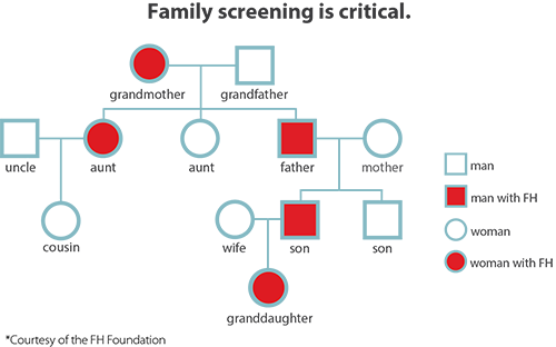 family screening for FH diagram