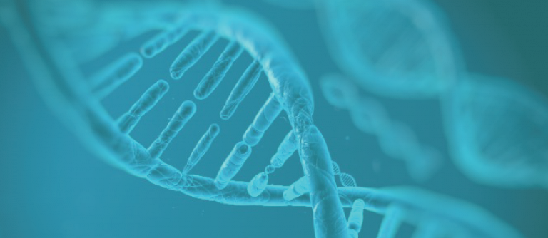 Heart disease can be caused by a genetic disorder