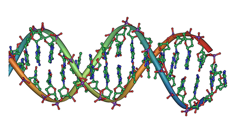 Genetic Disorder | Definition and Information